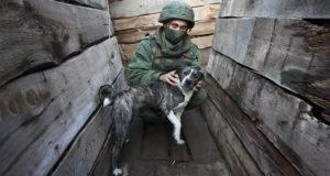 В Киеве заявили о доработке плана урегулирования конфликта в Донбассе