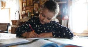 В правительстве России исключили полный переход на дистанционное образование