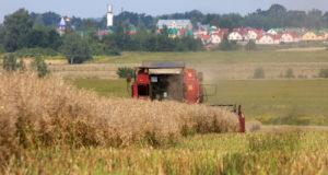 Минск изменит направления экспорта продукции из-за санкций